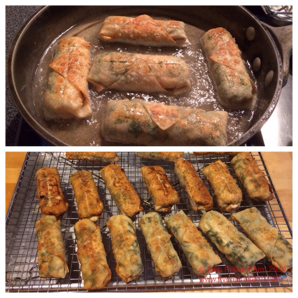 How to Preserve Lettuce: Egg Rolls