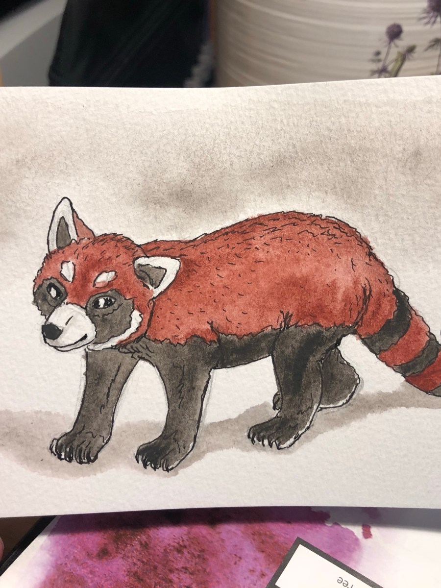 Painting of a red panda standing against a white background.