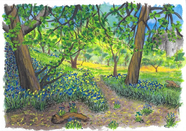 Watercolor painting of field and flowers.