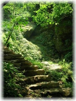 Stairs to Wudang Temple