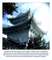 wudang saying