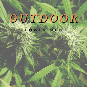 Outdoor Flower