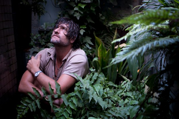 John, photographed in the verdant grotto he has created in his basement.
