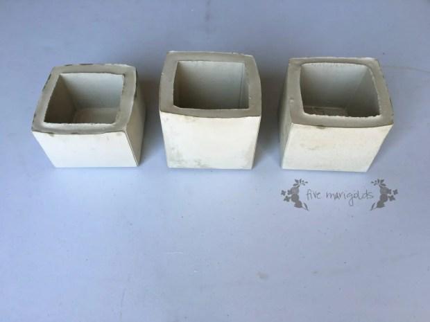 Cement Succulent Flower Pot Teacher Gift | Five Marigolds