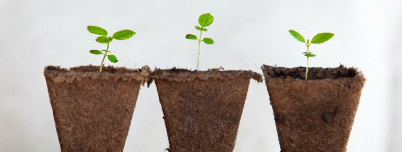How to Grow as a Christian Writer {Day 17 :: Grow}