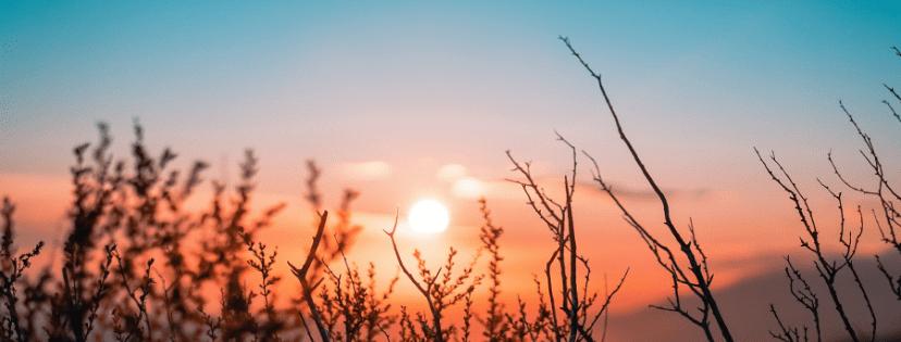 FMF Writing Prompt Link-up :: Sunrise