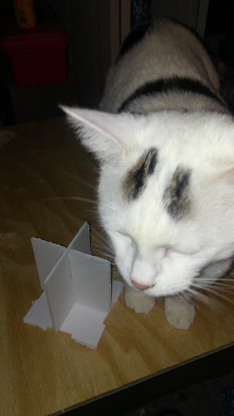 baccarat-box-cat-two