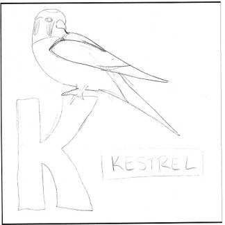 k-is-for-kestrel