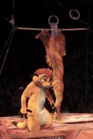 Timon and the Tumble Monkeys