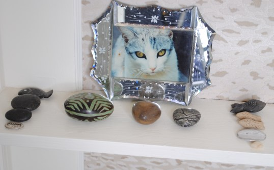 bookcase detail Camper my Kitten