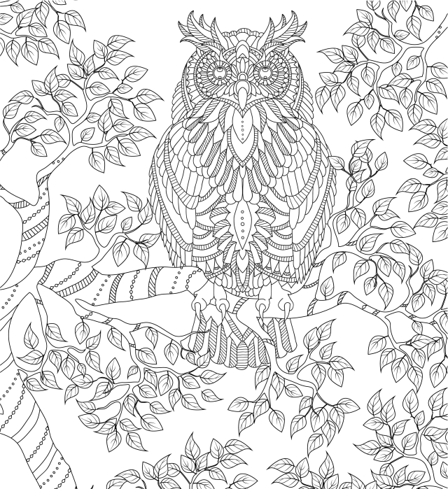 Give you 16 already made detailed adult coloring book pages by