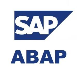 Image result for SAP Developer & SAP Programmer