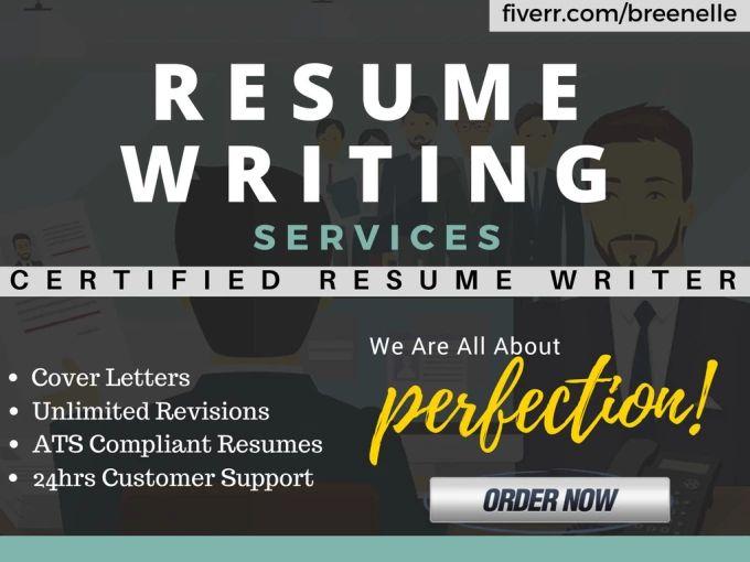 resume writing it professional