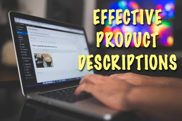 Image result for PRODUCT DESCRIPTION FOR YOUR ECOMMERCE STORE