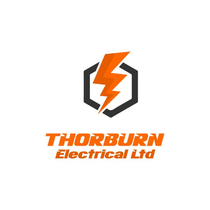 design professional logo in