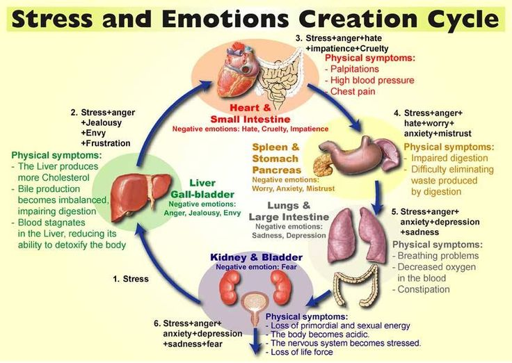 Image result for chinese organs and emotions