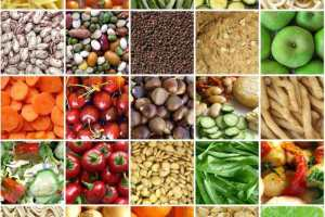 Dietary fiber reduces brain inflammation during aging