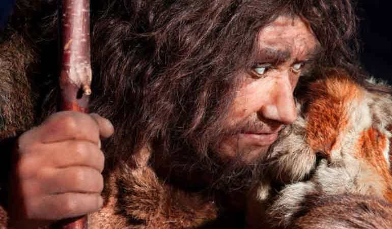 Cold climates contributed to the extinction of the Neanderthals