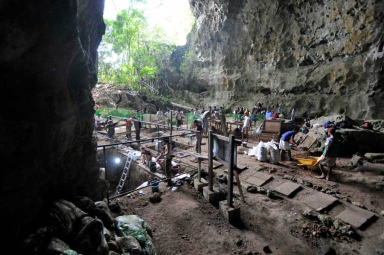 An international team of researchers have uncovered the remains of a new species of human in the Philippines