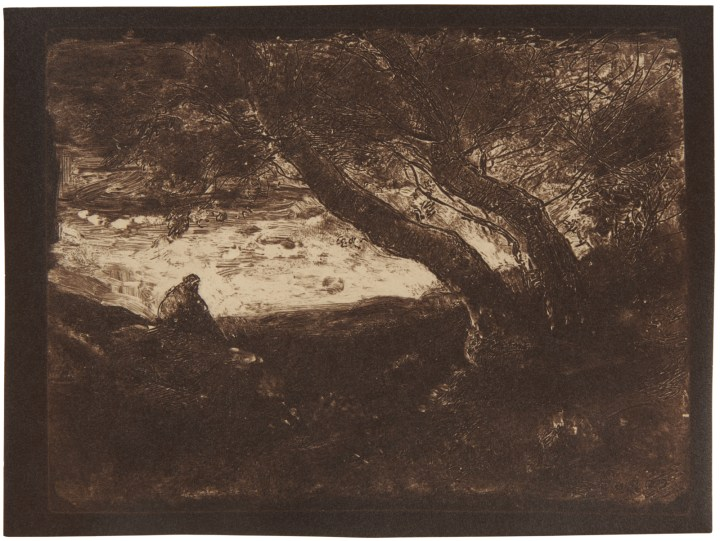 Learn About Clichés-verre, an Obscure 19th Century Image Reproduction Technique