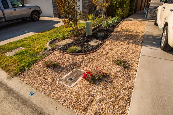 water conservation with landscape