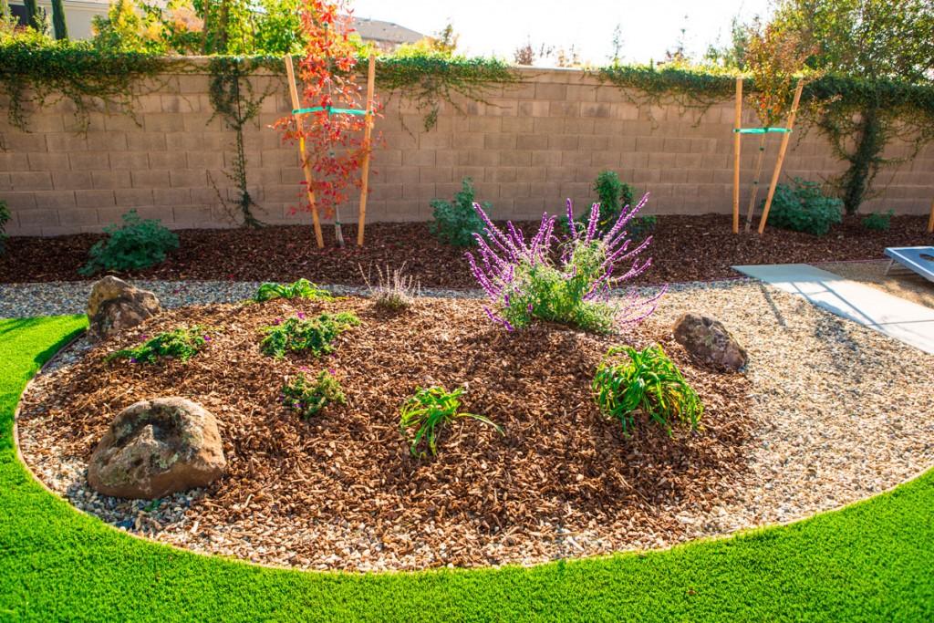 Xeriscaping Drought Proof Landscape Design Sacramento