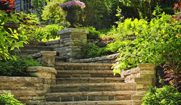 sacramento landscape design landscapers