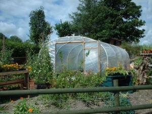 polytunnel customer 14 gl 6 (Copy)
