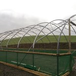 polytunnel customer structure 30 x 90 in progress