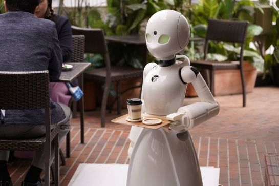 Robot waiters controlled by people with paralysis