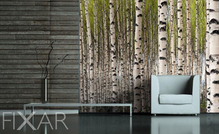 Der Geruch der Birken  Fototapete frs Wohnzimmer