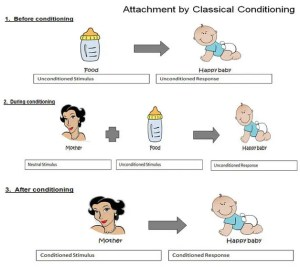 attachment-conditioning