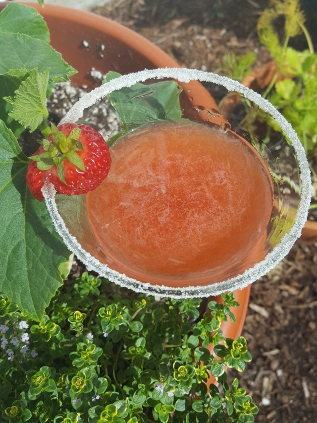 roasted strawberry rhubarb martini