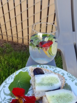 cucumber sandwich and spanish g and t
