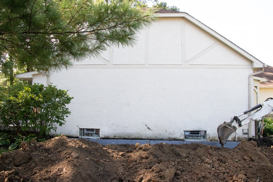 tree roots and foundation damage