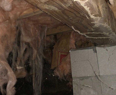 Should You Purchase a Home with a Damaged Crawl Space?