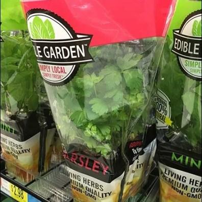 fresh-grow-herb-snip-it-rack-3