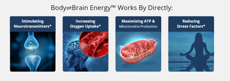How HFL's Body Brain Energy works