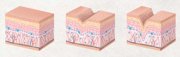 How Organixx Collagen work