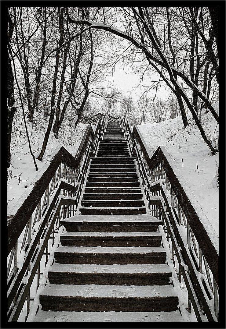 winter ice photography (15)