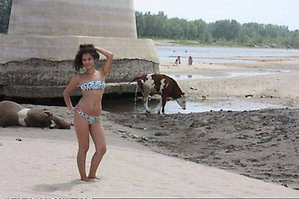 odd things at beach (6)
