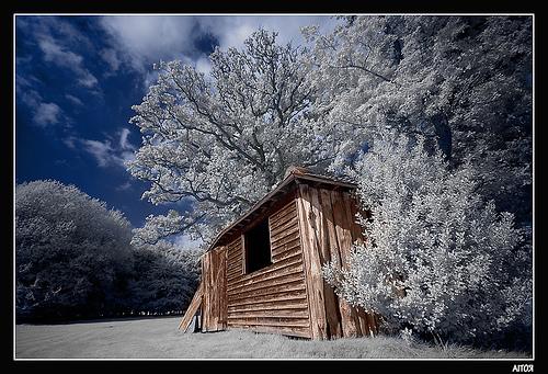 Amazing Infrared Photography (4)