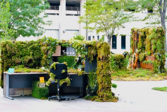 The overgrown desk
