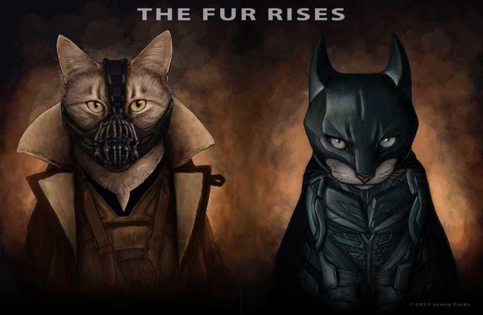 Batman And Bane Cat