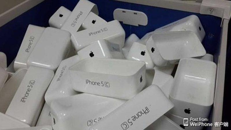 Apple_1773845a