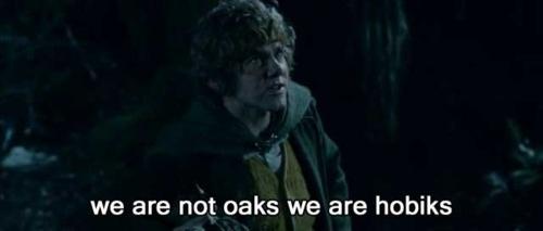 Hilarious Subtitles