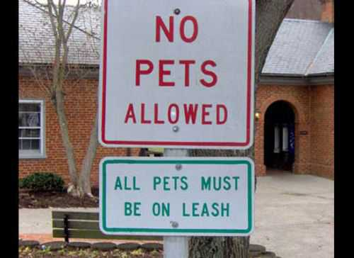Most Ironic Signs In The World