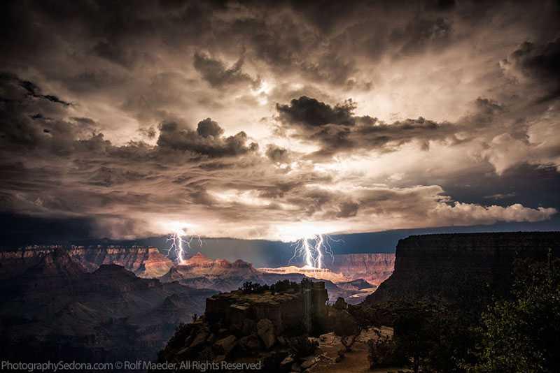 Amazing Pictures