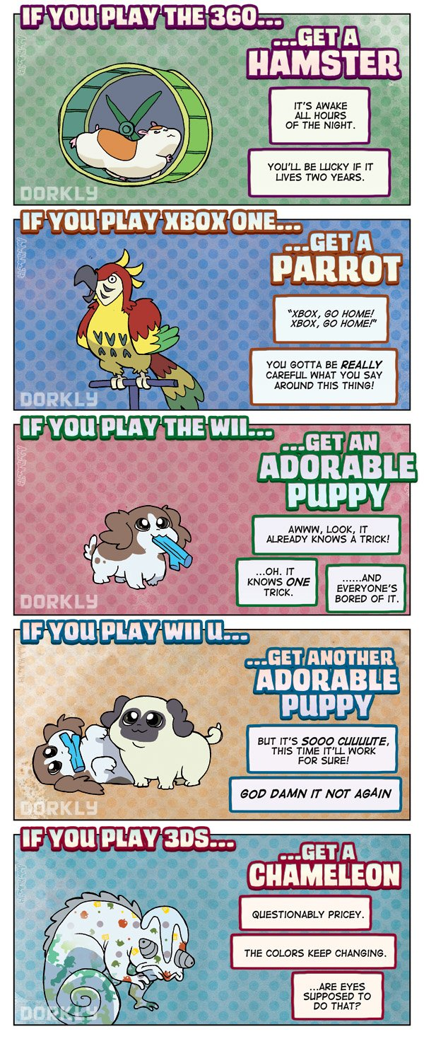 Perfect Pet For Every Gamer