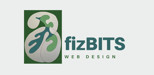 fizbits ecommerce web design analytics and marketing